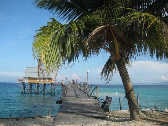 Roach Reefs Resort: Roach Reef Resorts