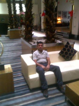 Radisson Blu Hotel, Cairo Heliopolis : WAITING PLACE