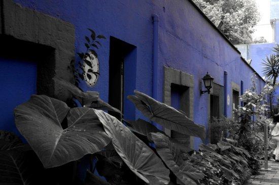 Musée Frida Kahlo : La casa Azul