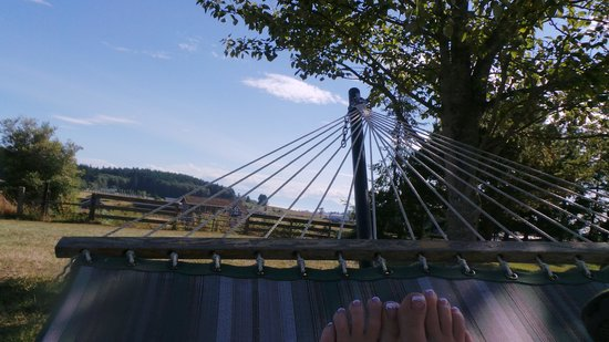 Trumpeter Inn: relaxing in the hammock