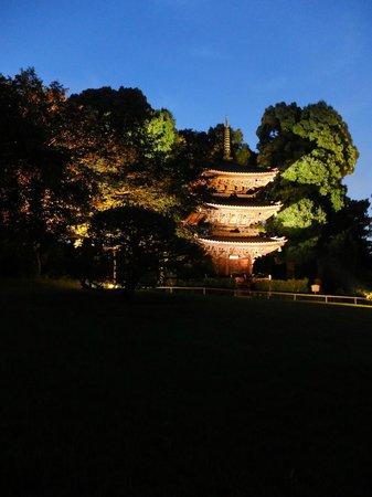 Hotel Chinzanso Tokyo : 庭園