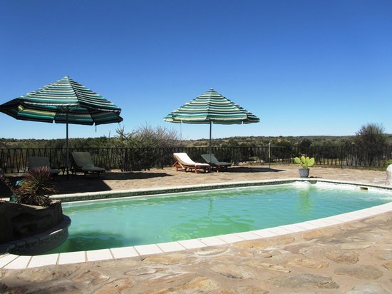 Leopard Lodge : Pool