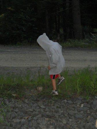 Rip Van Winkle Campgrounds: MATT