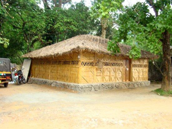 Bamboo Grove: Vanashree