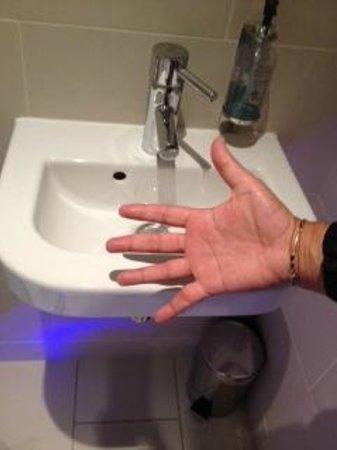 Seraphine London Kensington Gardens: Lavandino più stretto della mano