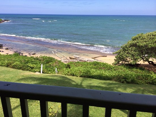 Kapaa Sands : View from Unit 3
