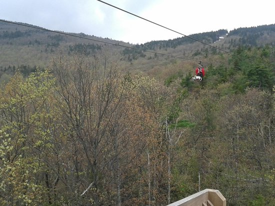Gunstock Mountain Resort: Gunstock Zip line tour