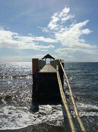 Dumaguete Springs Beach Resort: The bridge