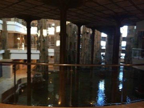 Holiday Polynesia: hotel