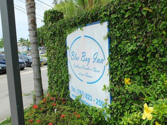 Blue Boy Inn: Outside