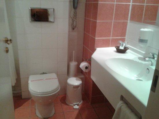 Athina Airport Hotel: Waschbecken und Toilette