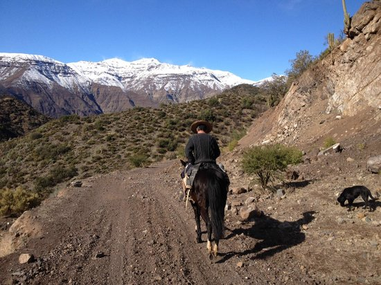 Horse Riding Chile Day Tours: Rigo the guide in front of the mountains