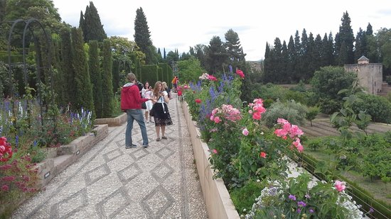 Hotel America: the garden