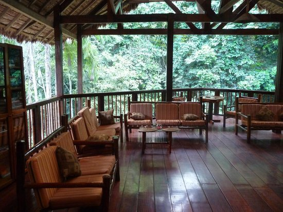 Refugio Amazonas: Upper floor library seating area