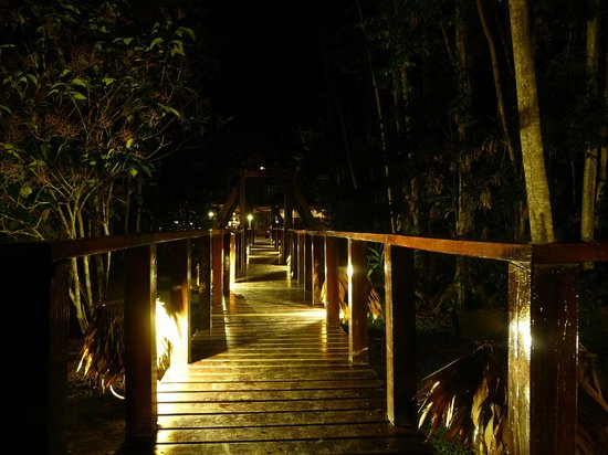 Refugio Amazonas: Way between the main lodge and the sleeping area