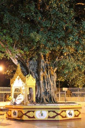 Pagode Shwedagon : И тихие уголки