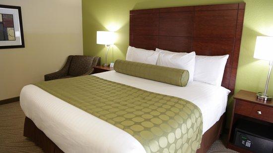 Cobblestone Inn and Suites Marquette, IA/Prairie Du Chien