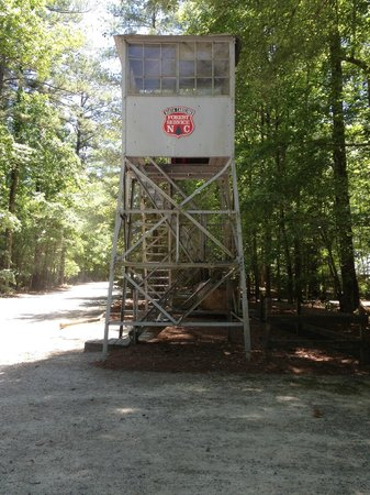 Clemmons Educational State Forest : Trail Entrance