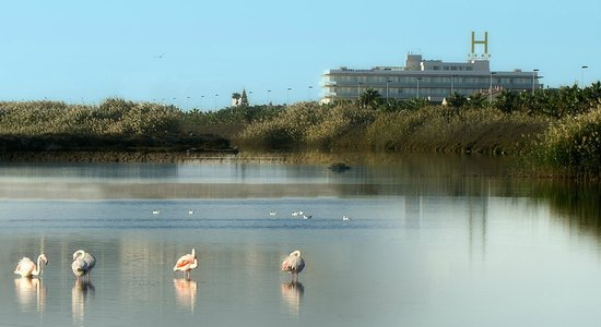 Hotel Lodomar Spa & Talasoterapia: Exterior y Salinas
