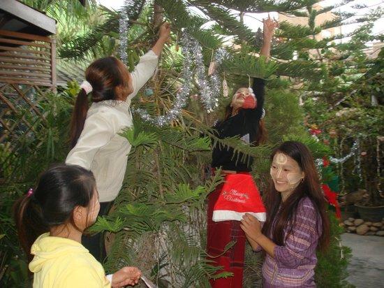 Aquarius Inn : Decorating the christmas tree in the hotel garden