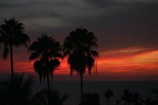 Hard Rock Hotel Vallarta: Sunset Palms