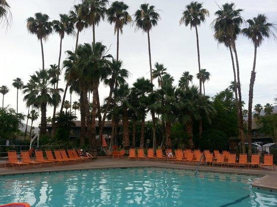 Caliente Tropics Resort: Poolside
