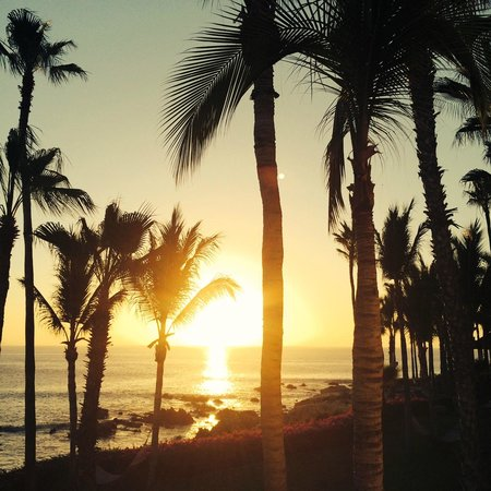 One & Only Palmilla: good morning