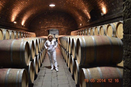 Osteria di Passignano: Winery