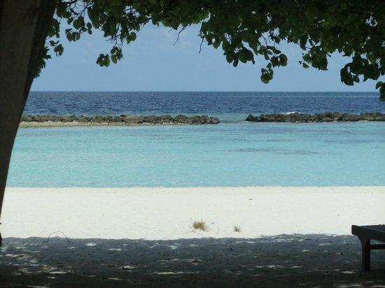 Royal Island Resort & Spa: Vista dalla camera