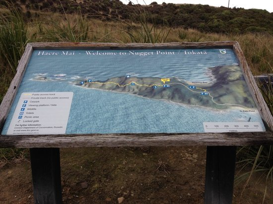 Nugget Point Info Map