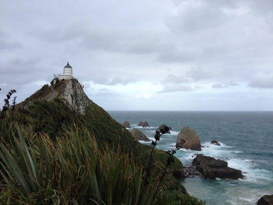 Nugget Point/Tokata Walks: Tokata Lighthouse