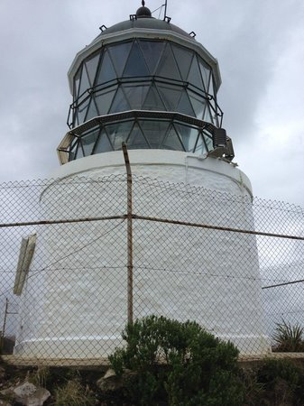Nugget Point: Tokata Lighthouse