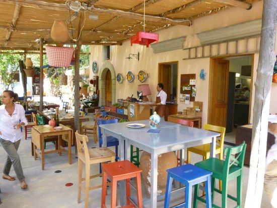 Trattoria Casa Colonica al Negombo: ambiente carinissimo ottimo buon gusto