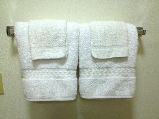 Bristlecone Manor Motel: New fluffy towels!