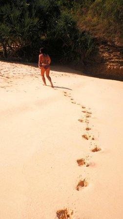 Jeeva Beloam Beach Camp: Пляж