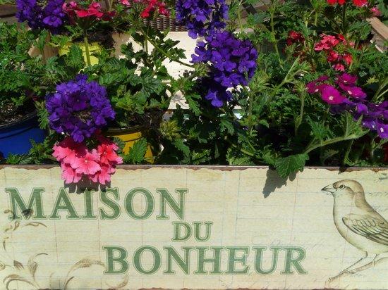 Gite Alsacien : Gîte Alsacien à Ribeauvillé = Maison du Bonheur !