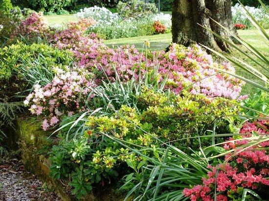 Bodrean Manor Farm: Beautiful Garden