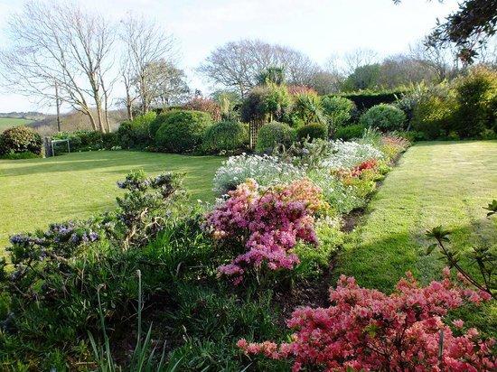 Bodrean Manor Farm: Springtime Garden