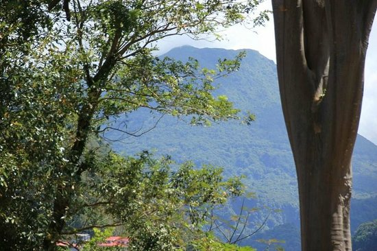 Dominica Botanic Gardens: View from Morne Bruce
