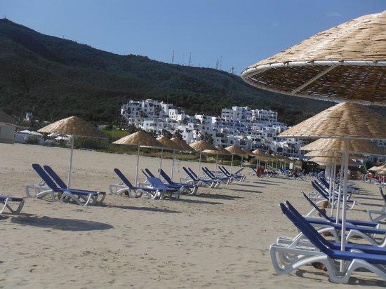 Club Med Yasmina : la plage et le club