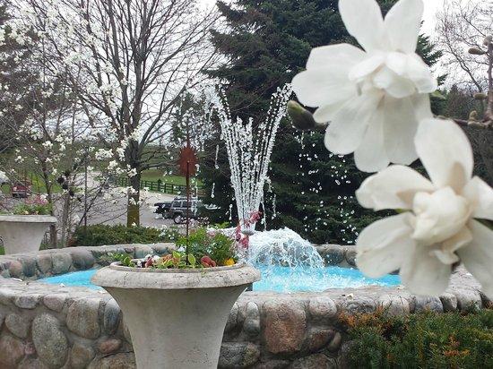 The Inn at Black Star Farms: Fountain