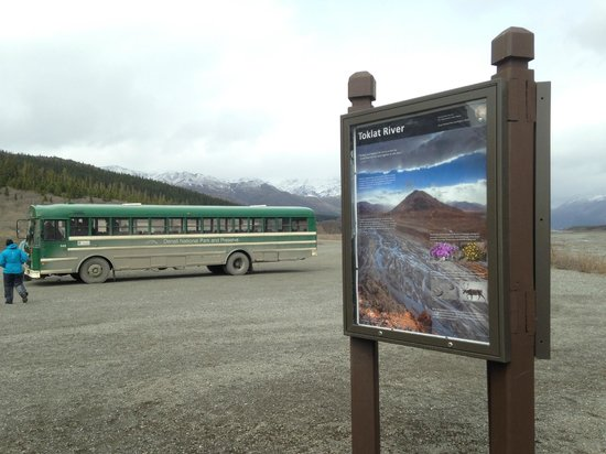Wilderness Access Center: Toklat Station