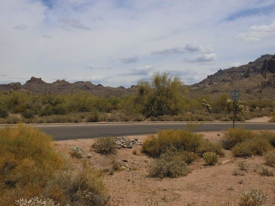 Lost Dutchman State Park: Paved roads lead to each well marked camp site