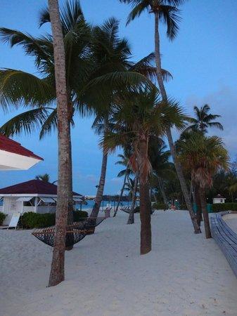 Breezes Resort & Spa Bahamas : Resort grounds