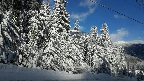 Peak 2 Peak Gondola: Whistler