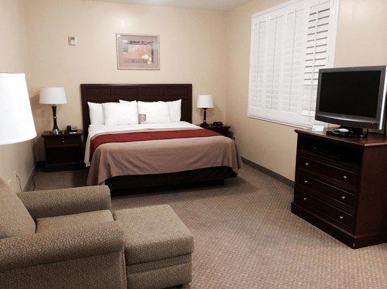 Comfort Inn Pomona: Guest Room