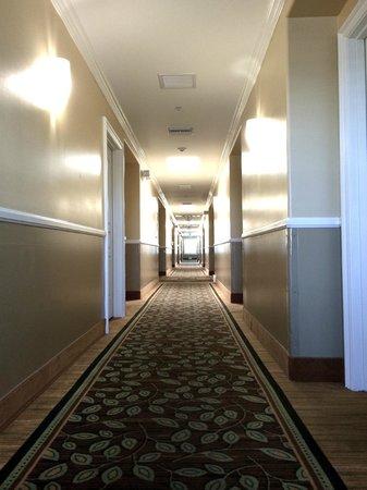Comfort Inn Pomona: Hallway