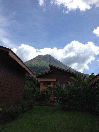 Hotel El Silencio del Campo: View from our patio