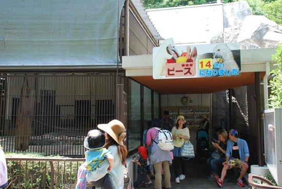 Ehime Tobe Zoo : TOBE ZOO 2
