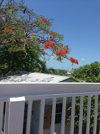 Key West Harbor Inn: View from Deck